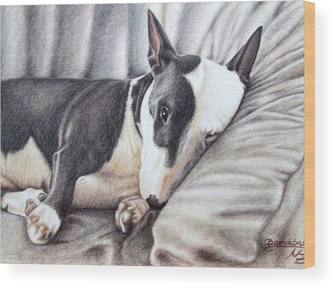 Dog Wood Print featuring the drawing Mini Bulldog Terrier by Nicole Zeug