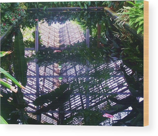 Reflection Wood Print featuring the photograph Mirror Image IIi by Anna Villarreal Garbis