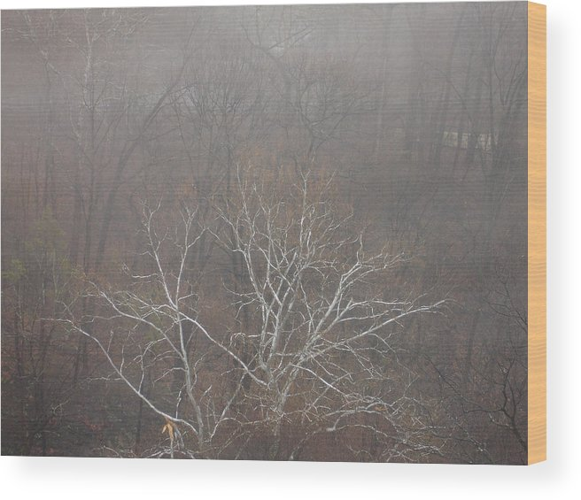 Scenic Wood Print featuring the photograph Mist Over The Hudson by Lynda Lehmann