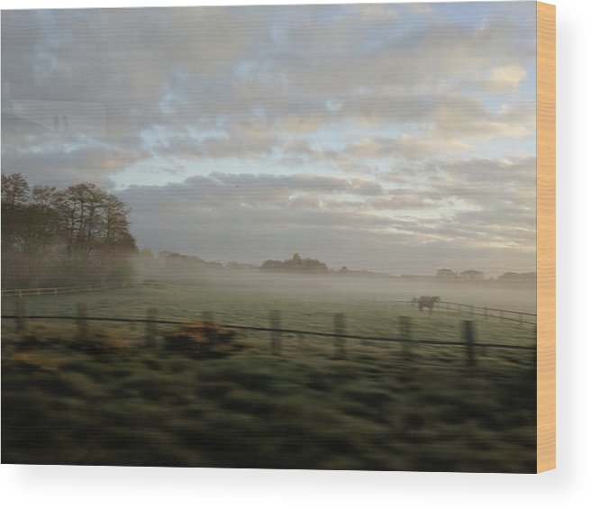 Mist Field Nature Morning Wood Print featuring the photograph Morning Mist by Adam J Walker