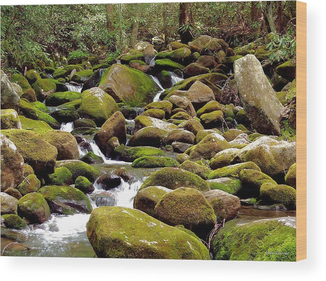Nature Wood Print featuring the photograph Mountain Stream by Johann Todesengel