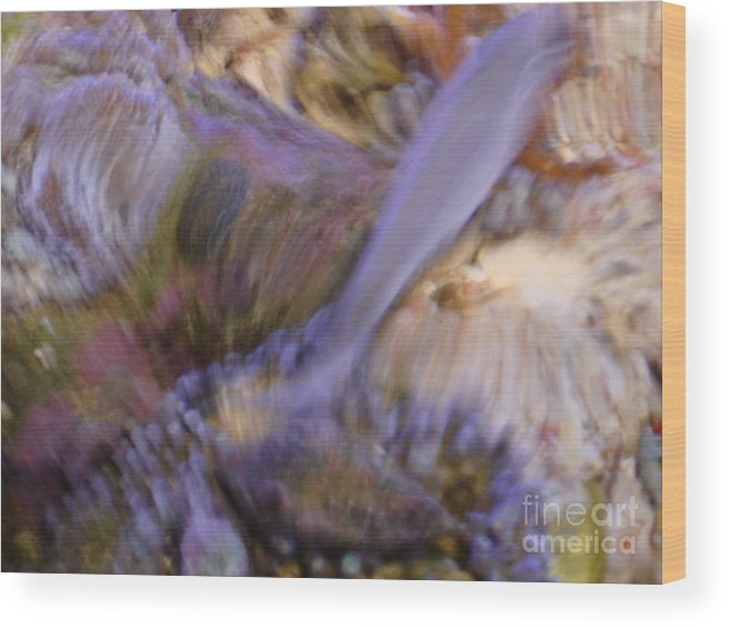 Fish Wood Print featuring the photograph Movement by PJ Cloud