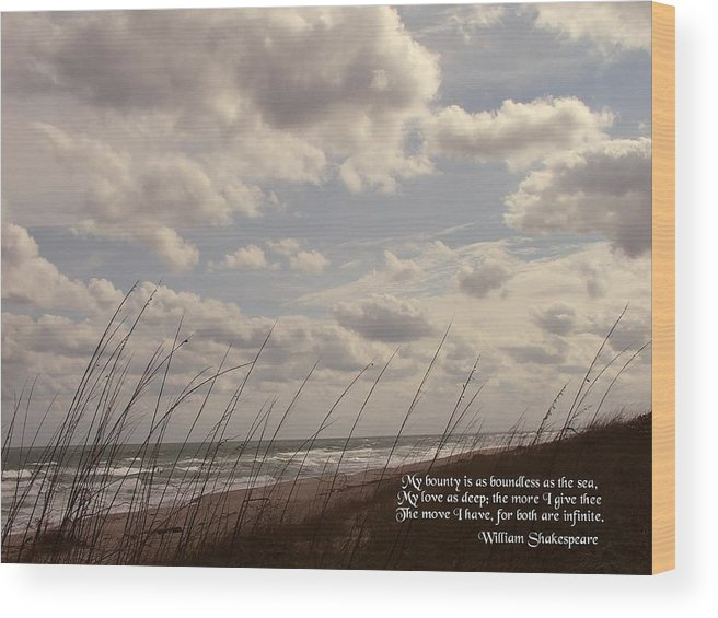 Seascape Wood Print featuring the photograph My Bounty by Judy Waller