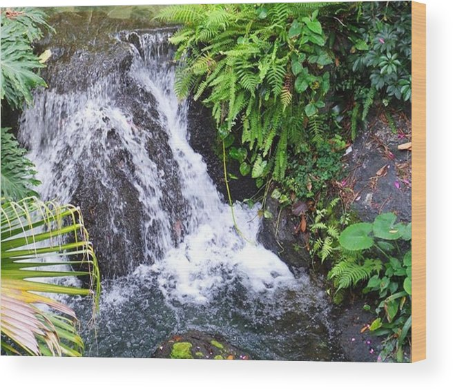 Water Wood Print featuring the photograph Natural Beauty by Rana Adamchick