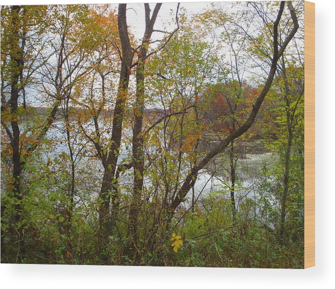 Autumn Landscape Wood Print featuring the photograph Nature's Expression-11 by Leonard Holland