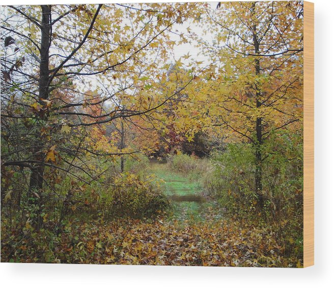 Autumn Landscape Wood Print featuring the photograph Nature's Expression-12 by Leonard Holland