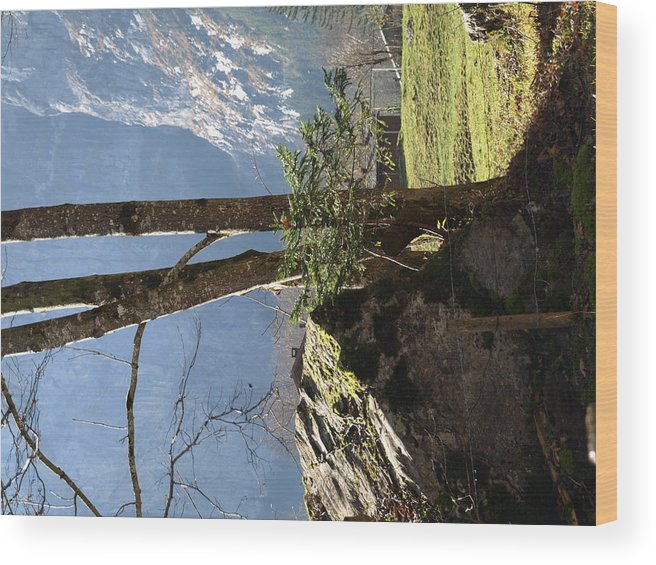 Landscape Wood Print featuring the photograph Neutral by Randall Slinkard