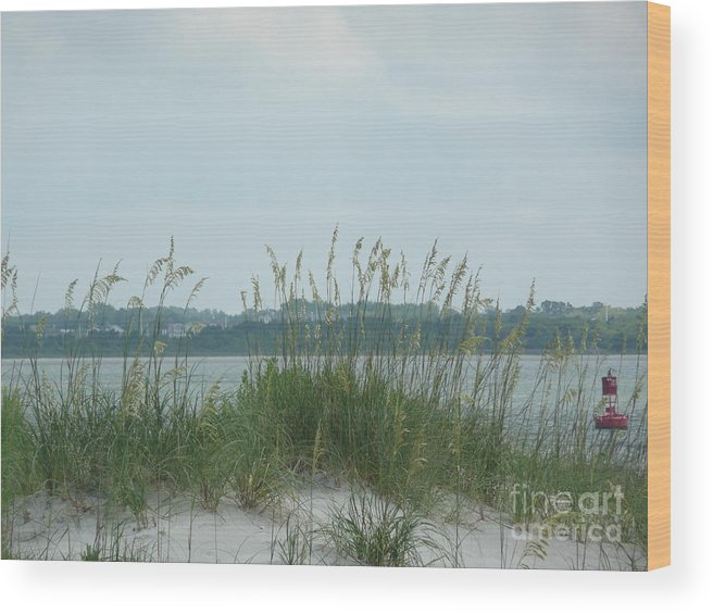 Scenery Wood Print featuring the photograph Oceanview Through Seaoats by Barb Montanye Meseroll