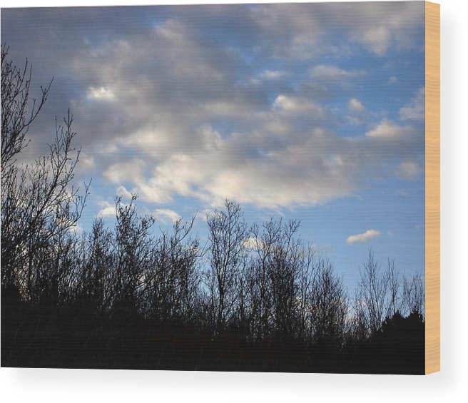 Trees Wood Print featuring the photograph October Skies by Marilynne Bull