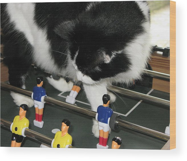 Cat Kong Wood Print featuring the photograph Off Side by Maria Joy