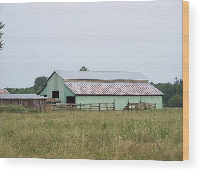 Barn Wood Print featuring the photograph Old Green Barn  Washington State by Laurie Kidd