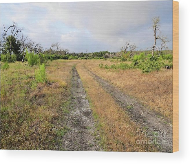 Texas Wood Print featuring the photograph Old Texas Roads by Gary Richards