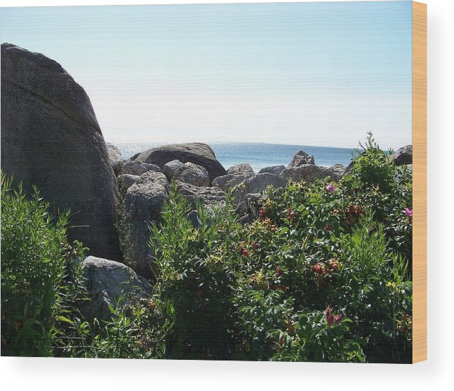 Ocean Wood Print featuring the photograph On The Rocks by Donna Davis