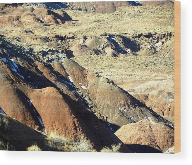 Photograph On Paper Wood Print featuring the photograph Painted Desert 11 by Patricia Bigelow