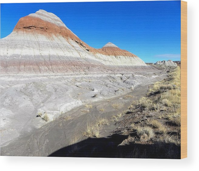 Photograph On Paper Wood Print featuring the photograph Painted Desert 6 by Patricia Bigelow