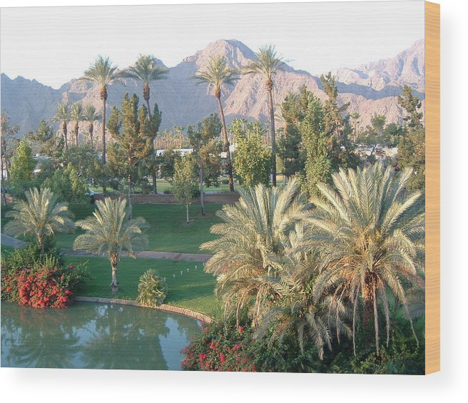 Landscape Wood Print featuring the photograph Palm Springs Ca by Cheryl Ehlers