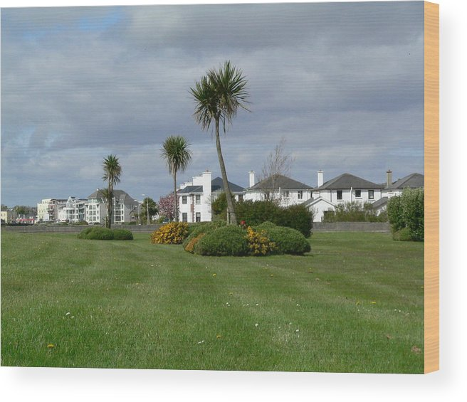 Spring Wood Print featuring the photograph Palms Of Ireland by Attila Balazs