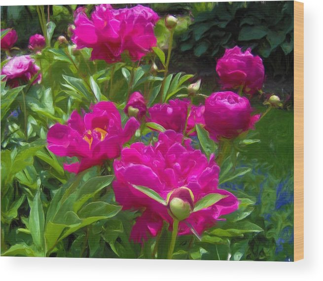 Peonies Wood Print featuring the painting Pam's Perfect Peonies by Liz Evensen