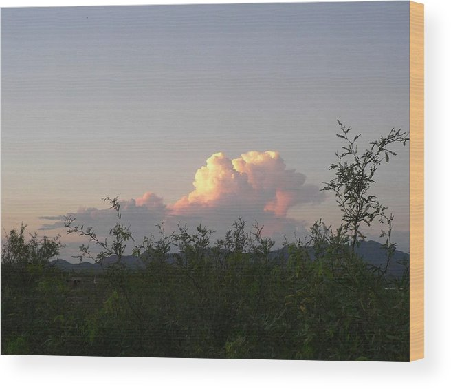 Photography Wood Print featuring the photograph Peace by Cynthia Ann Swan