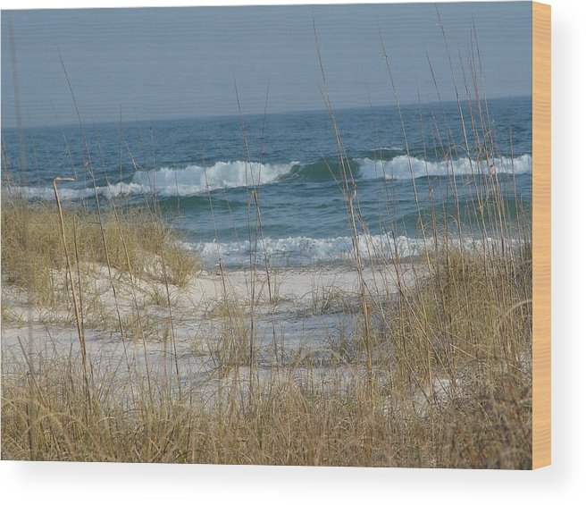 Florida Wood Print featuring the photograph Peaceful Beach Shoreline by Patty Vicknair