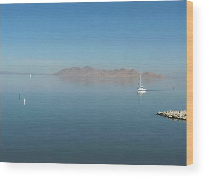 Landscape Wood Print featuring the photograph Peaceful Existence by Janet Hall