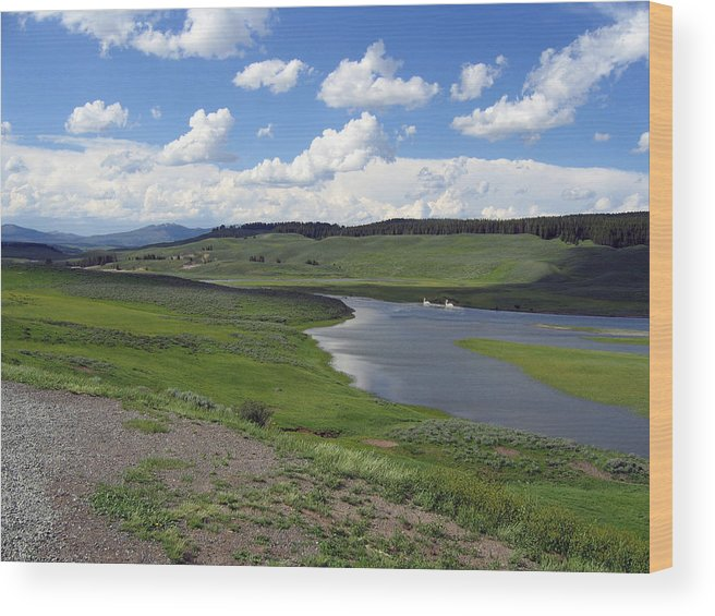 Lake Wood Print featuring the photograph Peaceful Lake At Yellowstone by Diane Wallace