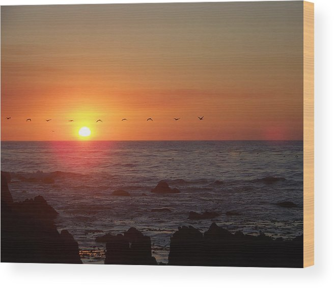 Sunsets Wood Print featuring the photograph Pelicans In Flight by Maggie Cruser