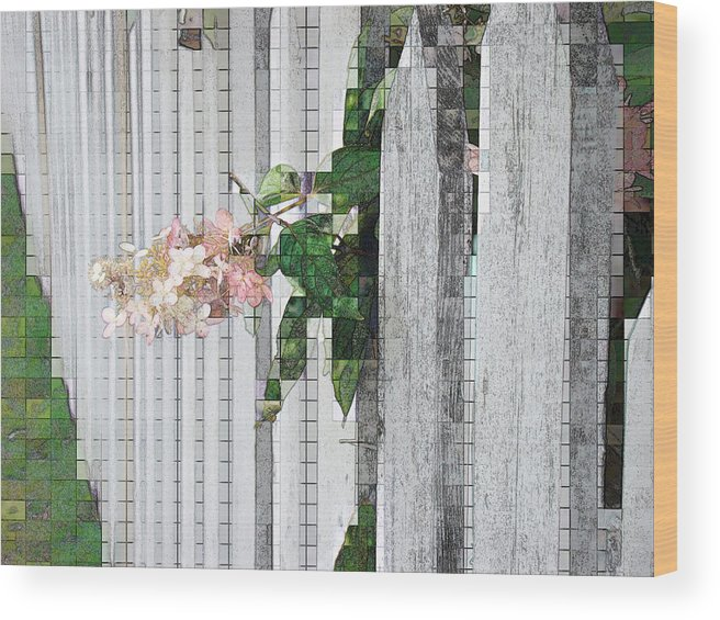 Photgraph Wood Print featuring the photograph Pencil Mosaic by Tingy Wende