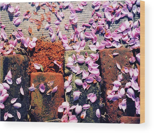 Spring Wood Print featuring the photograph Petals On The Bricks 2 Ae by Lyle Crump