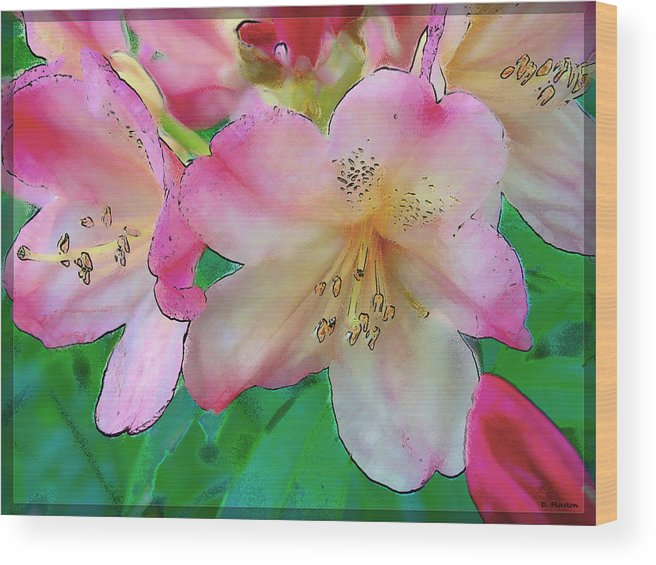 Ebsq Wood Print featuring the photograph Pink Azalea by Dee Flouton