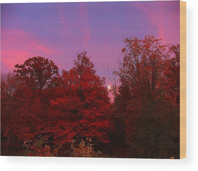 Moon Wood Print featuring the photograph Pink Moonlite Night by Judy Waller