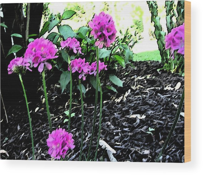Floral Wood Print featuring the painting Pinks by Mary Sonya Conti