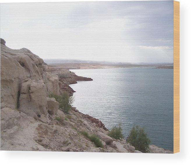 Landscape Wood Print featuring the photograph Powell Shoreline by Jennifer Whittemore