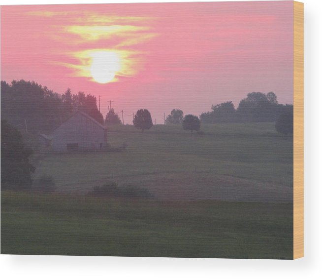 Nature Wood Print featuring the photograph Pretty In Pink by Martie DAndrea