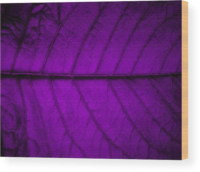 Leaf Wood Print featuring the photograph Purple Leaf by Steven Corie