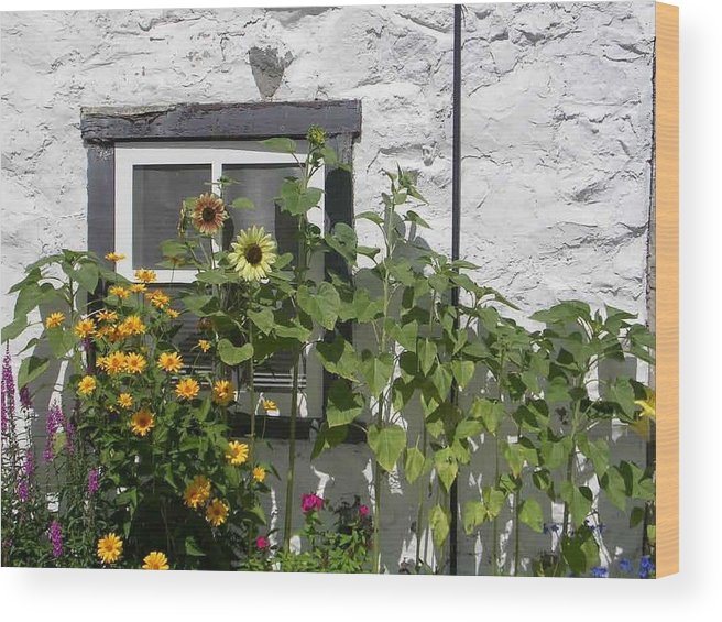 Quebec Garden Wood Print featuring the photograph Quebec Floral by Nancy Ferrier