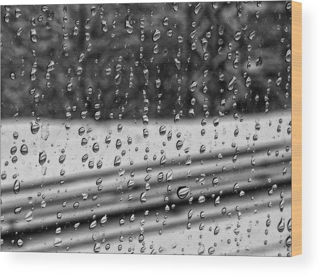 Rain Wood Print featuring the photograph Rainy Day On The Train by Robert Ullmann