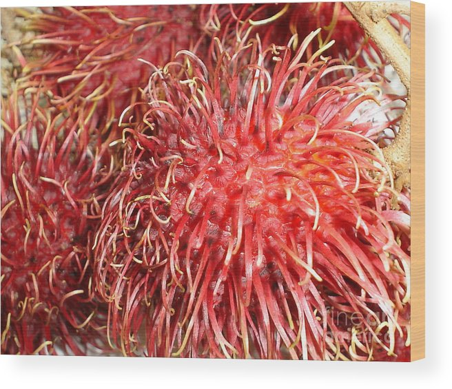Fruit Close Up Wood Print featuring the photograph Rambutan by Chandelle Hazen