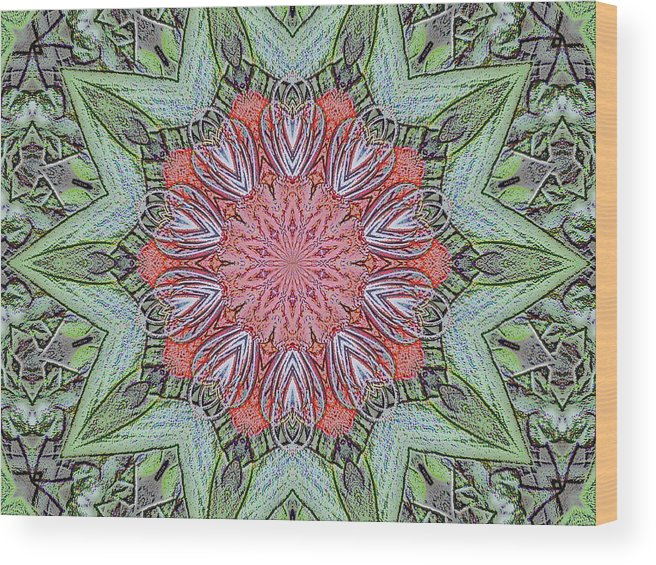 Amaryllis Wood Print featuring the digital art Red Amaryllis Trio Kaleidoscope by Marian Bell