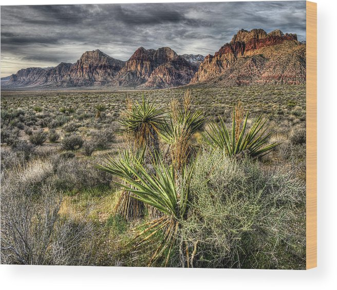 Red Rock Canyon Wood Print featuring the digital art Red Rock Canyon by Joan McDaniel