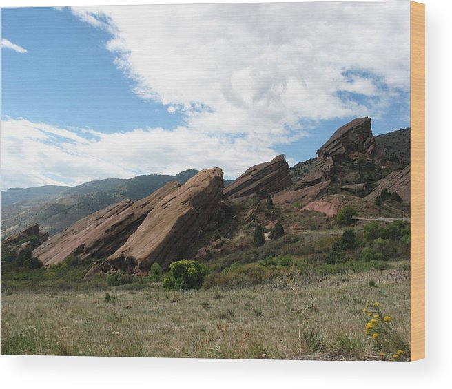 Red Rocks Wood Print featuring the photograph Red Rocks Denver by Margaret Fortunato