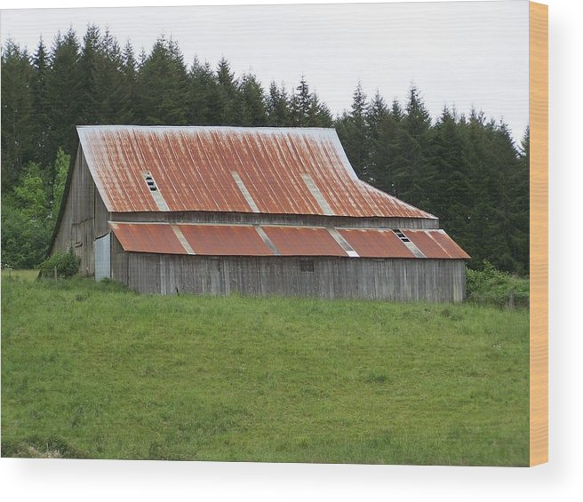 Barn Wood Print featuring the photograph Red Rusty Tin Roofed Old Barn Washington State by Laurie Kidd
