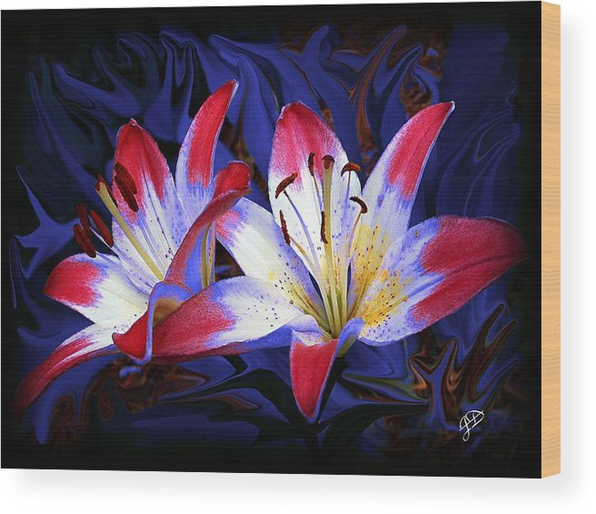 Lilies Wood Print featuring the photograph Red White And Blue by Jim Darnall