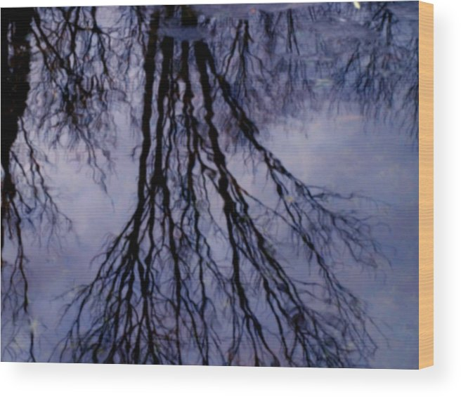 Water Wood Print featuring the photograph Reflections In Pond by Susan Grissom