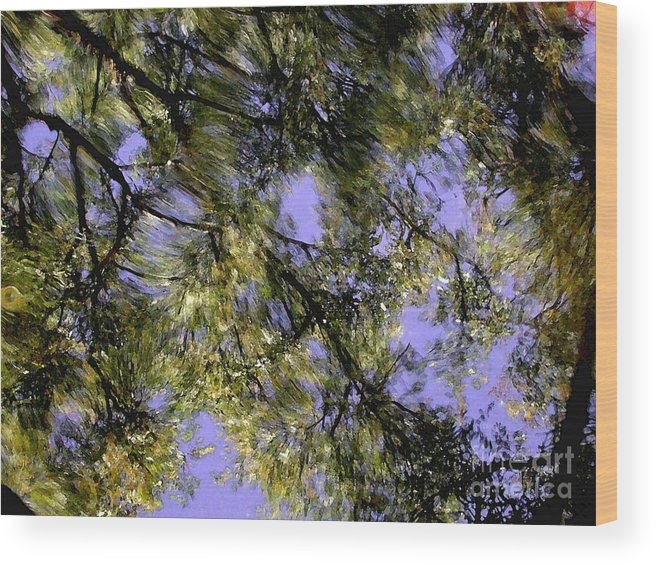 Reflections Wood Print featuring the photograph Reflections by Marc Bittan
