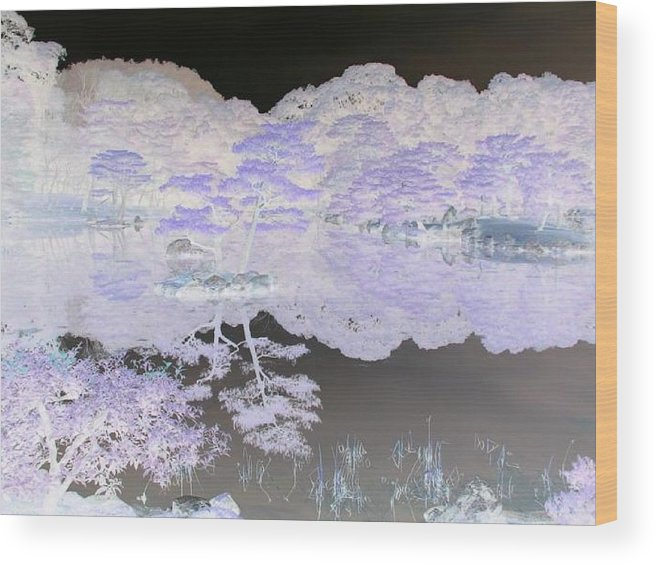 Reflection Wood Print featuring the photograph Reflections On A Surreal Pond by Curtis Schauer