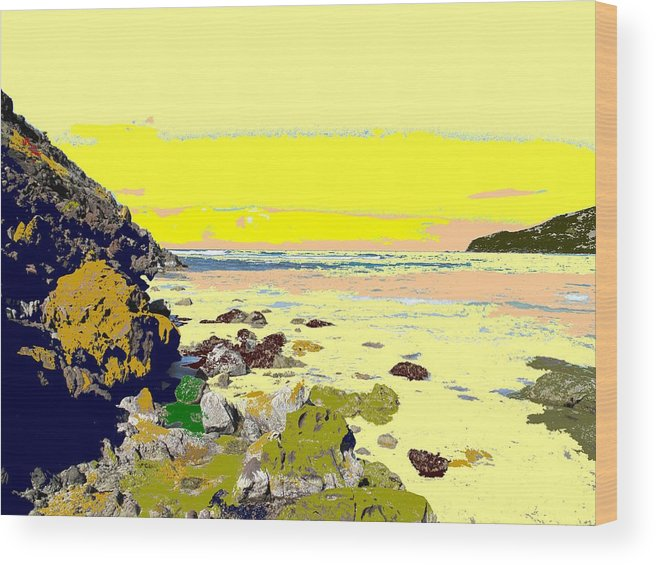 Beach Wood Print featuring the photograph Rocky Beach by Ian MacDonald