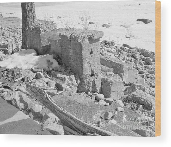 Ruins Of Old Park Amusement Wood Print featuring the photograph Ruins by Deborah Selib-Haig DMacq