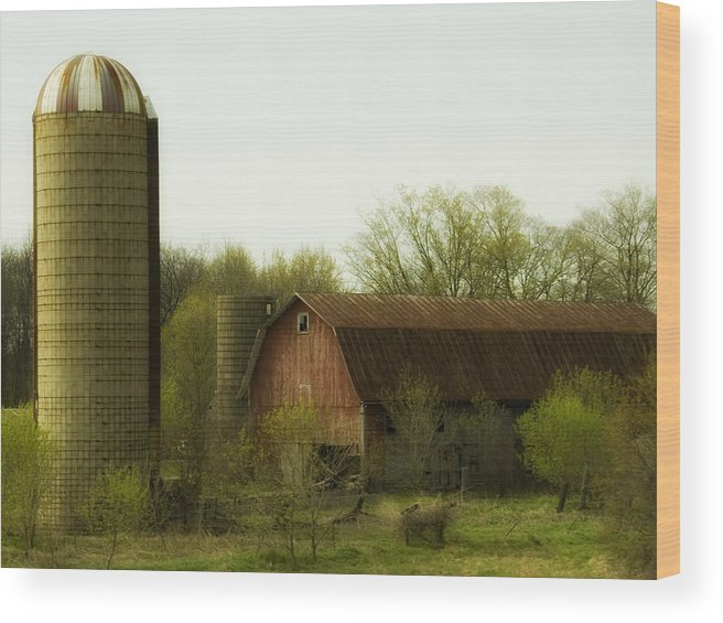Farm Wood Print featuring the photograph Rural Americana-02 by Neil Doren