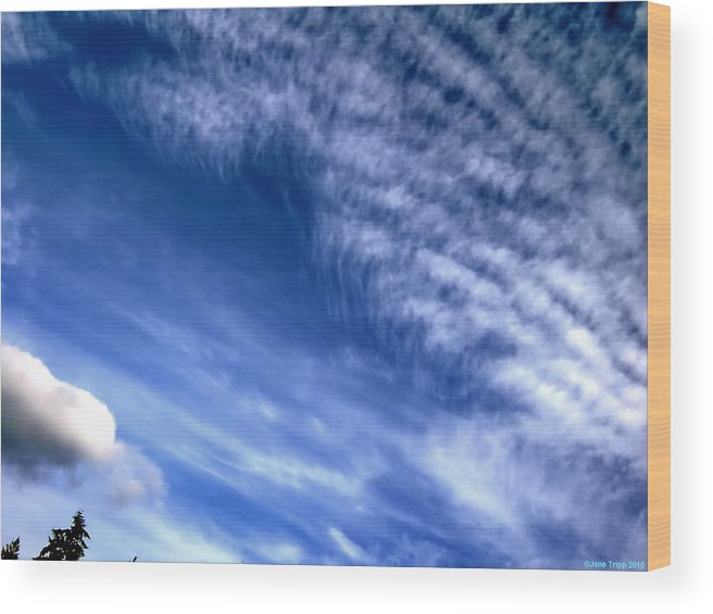 Impressionistic Sky Photograph Wood Print featuring the photograph Sailing By by Jane Tripp